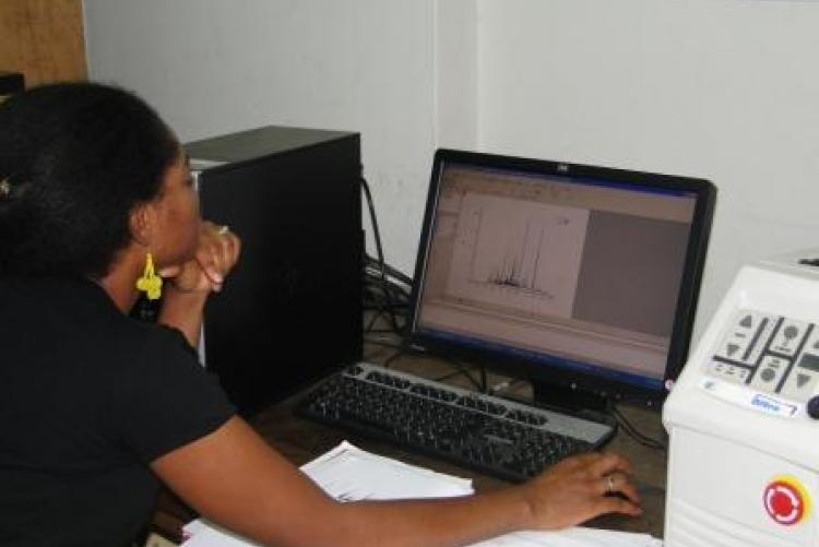 Dr. Alix analysing data using LIBS instrument